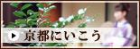 cat-kyoto.jpg